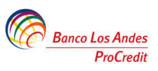 Los Andes Bank